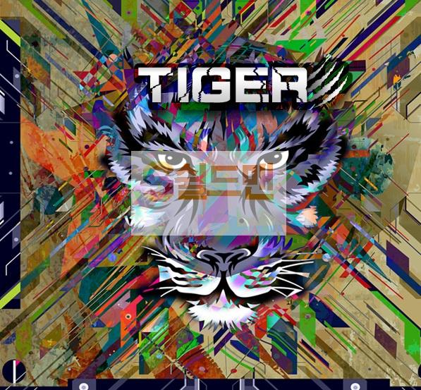 [먹튀사이트] 타이거 먹튀 TIGER 먹튀확정 http://tiger-dr.com 토토 사이트